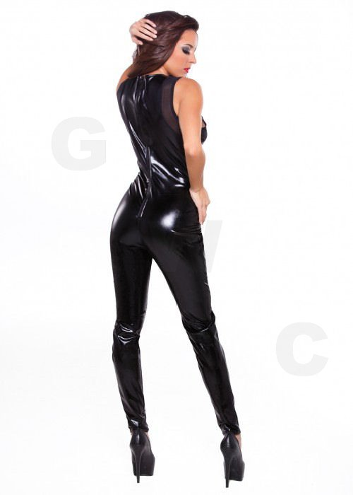 Kitten & Mesh Catsuit One Size
